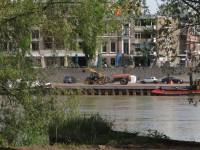 Geen dagelijkse verschijning op de Rijnkade.